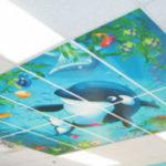 techos-4-150x150